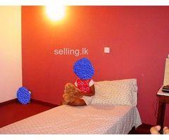 Athurugiriya, Millennium City, Zone 3, Heartland home for sale