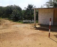 Horana Land For Sale