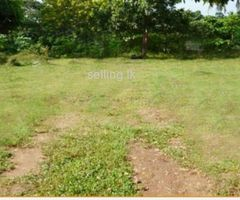 Commercial land for sale in anuradapura
