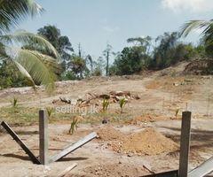Neboda Warakagoda land for sale( punchi sigiriya)