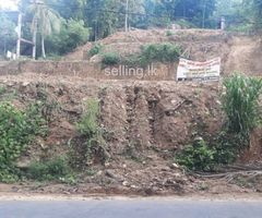 Land for sale in Hathagoda (near Warawala)
