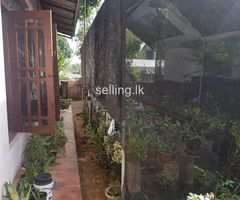 House for sale in bokundara