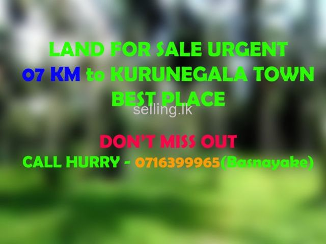 Land For Sale Kurunegala