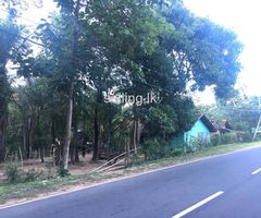 Land for sale in polonnaruwa