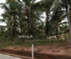 Neboda Warakagoda land for sale