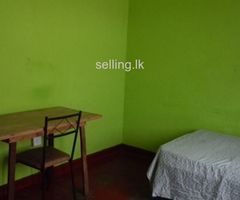 Borella room rent for male