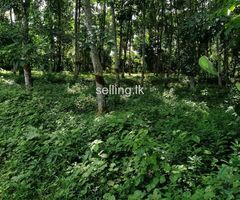 Land For sale in kaluthara Millewa