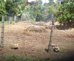 Panadura Paraththa Land for sale