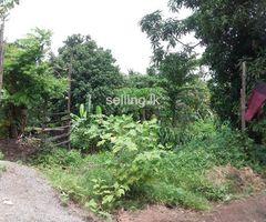 Land for sale Ambalangoda