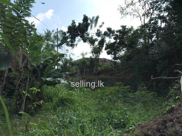 Nice Land for Sale in KARAPITIYA