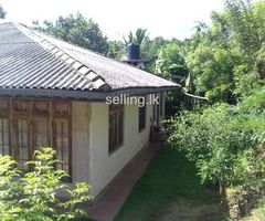 Stunning house for sale in Talatuoya kandy