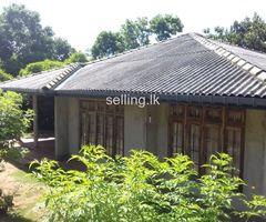 Stunning house for sale in Talatuoya kandy
