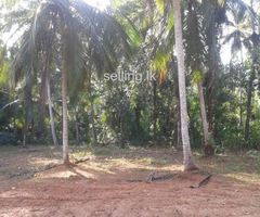 Land for sale Mirigama