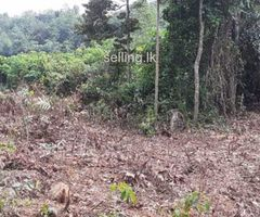 Land For sale in gampaha Alawala