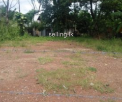 urgent  sale in Kalagedihena