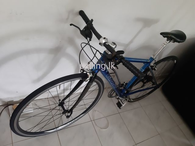Giant - Mountain Bike