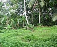 Valuable Land For Sale In Homagama,