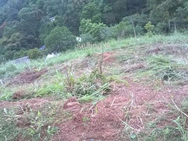 Land for sale in bolawatta kandy