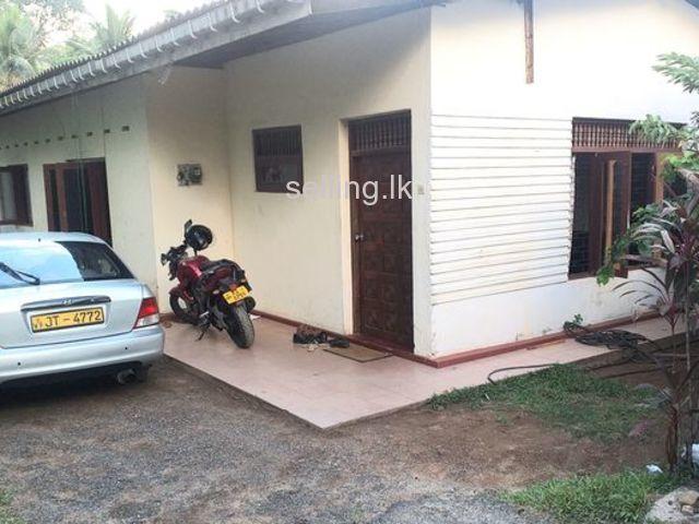 House for rent Kottawa