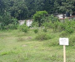 Land for sale in Bandaragama