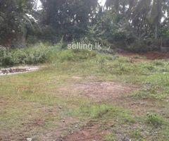 Super Land for Sale -Dolahena