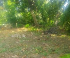 Habaraduwa town land fro sale
