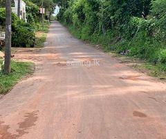17 perch land for sale in Nattandiya