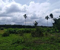 Land for sale at Moragahahena