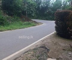 Land for sale in Danture
