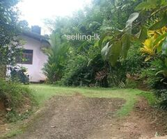 land with house in Amugoda