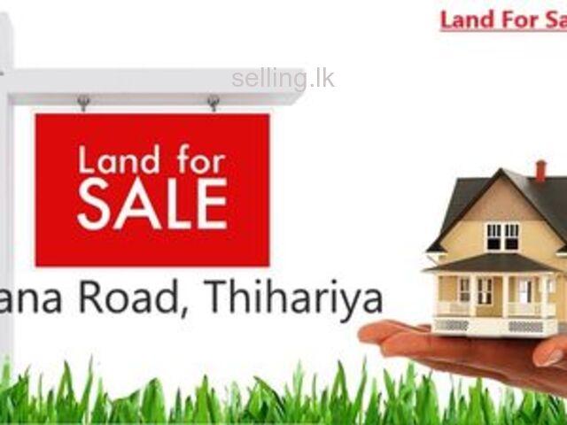 Land For Sale in Thihariya ( Palathadi)