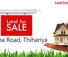 Land For Sale in Thihariya ( Palathadi)