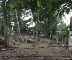Squire Land for sale in Kalutara