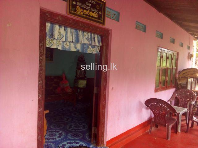 Vauniya house for sale