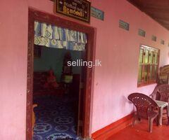 Vauniya house for sale