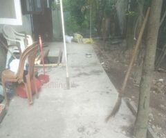 house for rent imidiately Ratmalana