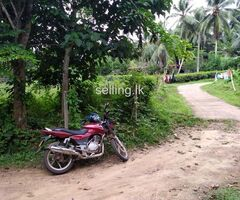 Land Sale Horana