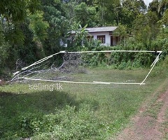 Kamburupitiya land for sale