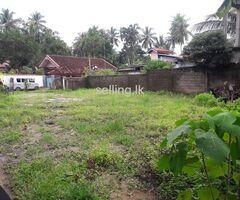 Land Negombo Dalupotha