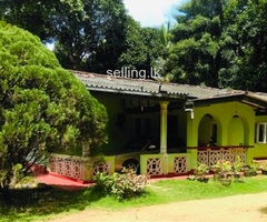 House for sale with big land Kalutara