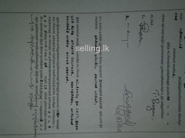 Bare Land For Sale in Batticaloa