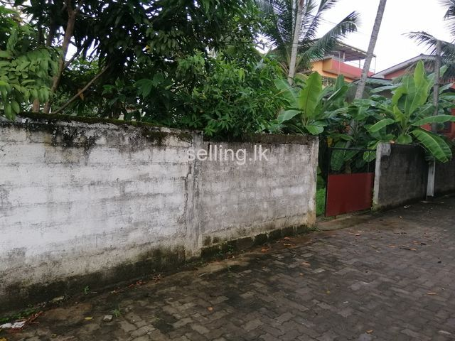 Land for sale in Wallanpitiya