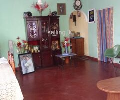 house for rent Homagama