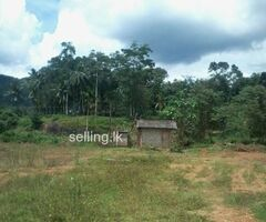 Land FOR SALE Avissawella