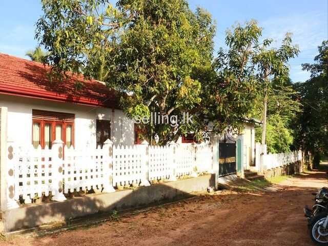 Land for sale with full complete house