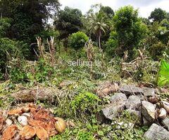 Pilimatalawa Land ඉඩම විකිණීමට