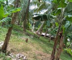 Land for sale near makadura