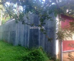 Immediately sale This Land