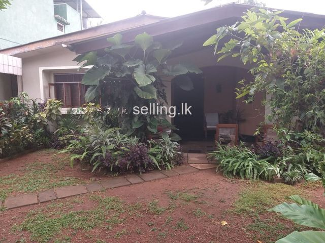 Land in nawala for sale