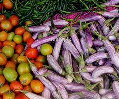 Vegetable delivery Kirulapone